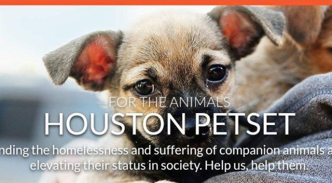 Houston Petset