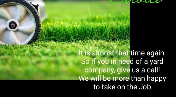 Need Lawn Care Service